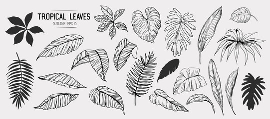 Tropical leaves. Set of hand drawn illustration. Vector. Isolated Wall mural