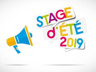 mégaphone coloré : stage d'été 2019