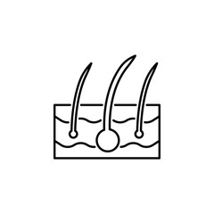 human organ epidermis outline icon. Signs and symbols can be used for web, logo, mobile app, UI, UX