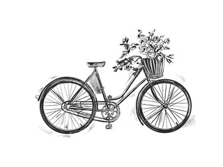 Vector hand drawn illustration of city bicycle in ink hand drawn style. Bike with step-through frame, pannier rack and front wicker basket.