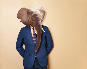 Male elephant in office clothing suit and shirt