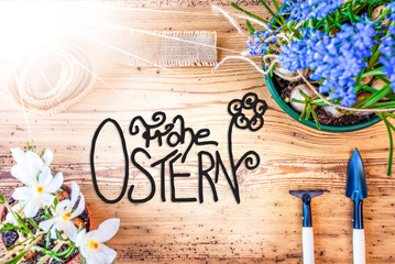 Sunny Spring Flowers, Calligraphy Frohe Ostern Means Happy Easter