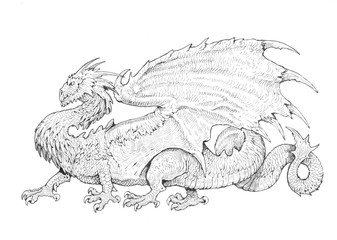 Three Headed Dragon Pencil Drawing Fantasy Art Buy This Stock