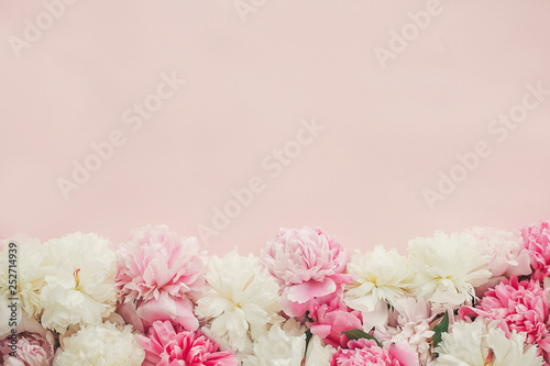 Stylish pink and white peonies border on pink paper flat lay with space for text. Happy mother's day. International womens day. Greeting card mockup. Hello spring