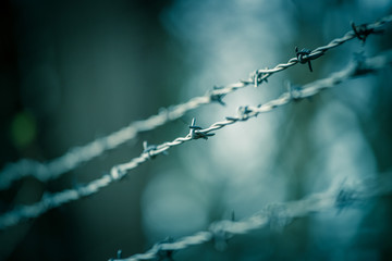Lines of barbed wire to demarcate the border
