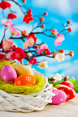 Colorful Easter eggs, white nest and branches with spring flowers on wooden table and blue sky background