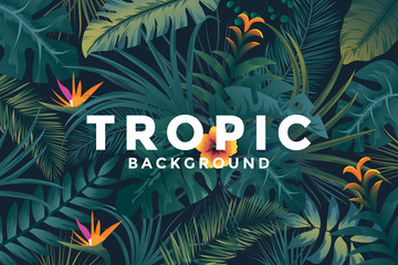 Tropical background with jungle plants. Trendy background with tropic leaves, can be used as Exotic wallpaper, Greeting card, poster, placard. Vector Illustration