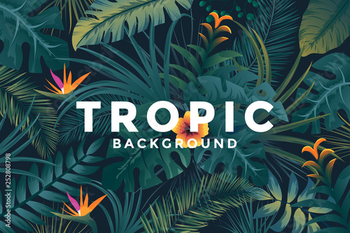 Tropical Background With Jungle Plants Trendy Background