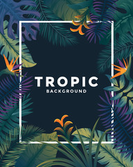 Tropical background with jungle plants. Frame with tropic leaves, can be used as Exotic wallpaper, Greeting card, poster, placard. Vector Illustration