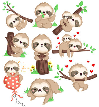 a vector of a cute sloth in many position