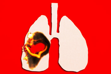 burning paper of lung on red background , smoking kills concept