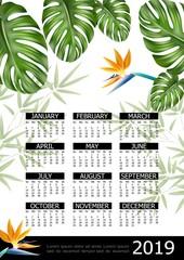 Wall Mural - Realistic Tropical 2019 Year Calendar Poster