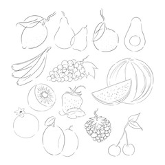 Minimalist Fruit