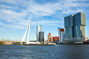 Photo sur Aluminium Rotterdam The morning view of Rotterdam Skyline with Erasmusbrug bridge, Netherlands