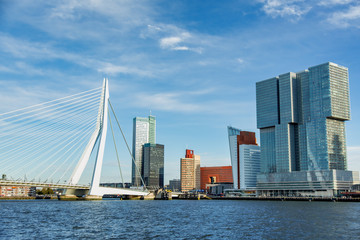 Poster Rotterdam The morning view of Rotterdam Skyline with Erasmusbrug bridge, Netherlands
