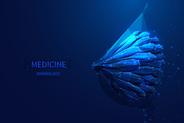 mammalogy low poly blue