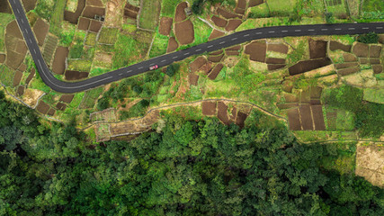 """Top view from drone of rural agricultural plantation fields in """"Chao da Ribeira"""", Madeira island, Portugal."""