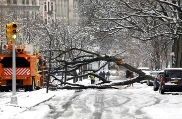 A worker cuts away a tree that fell across Riverside Drive during a snow storm in upper Manhattan in New York