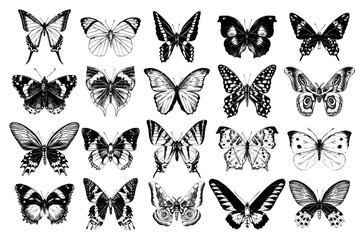 Hand drawn butterflies collection Wall mural