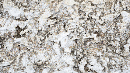 Wall Mural - stone texture