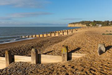 Pett beach near Fairlight Wood, Hastings and Battle East Sussex England UK