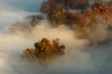 veduta panoramica con nebbia