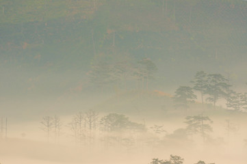 Fog cover small village at the foot mountains with the magical of light at dawn