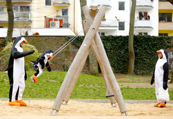"People dressed as penguins play at a playground on the ""Rosenmontag"" (Rose Monday) in Cologne"