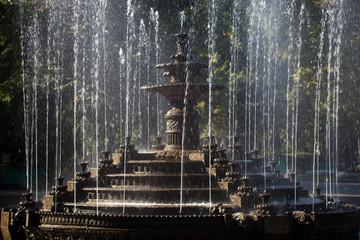 Moldova, la città di Chisinau. Il parco della città e la fontana.