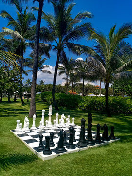 A large chessboard and chess, standing in a beautiful green garden, on a background of palm, trees and blue sky.