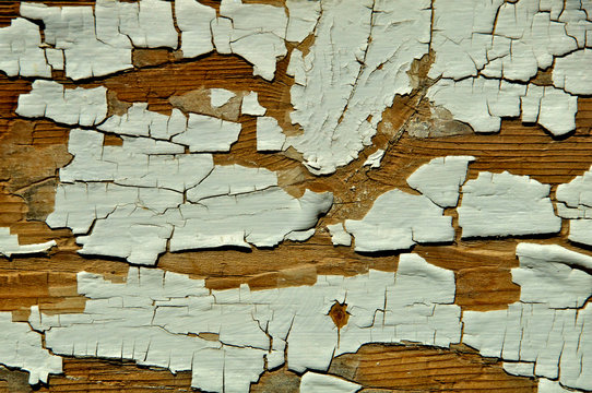 Chipped Leaded Paint Abstract