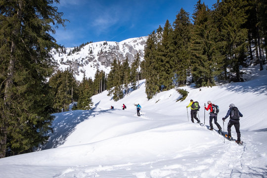 Adults snowshoeing thruogh forest in Kaiserau with mountain Kreuzkogel, Styria