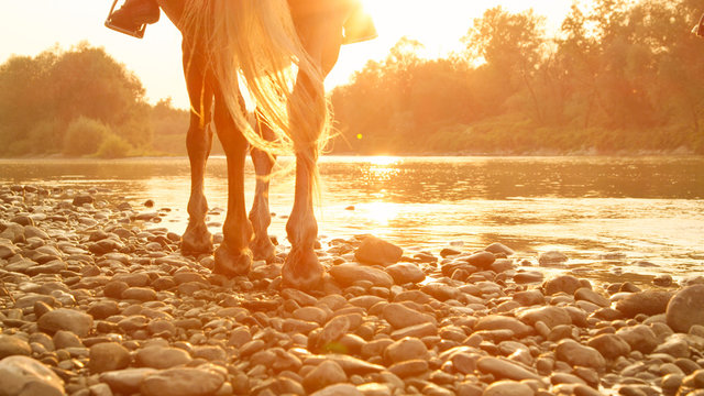 LOW ANGLE: Unrecognizable person riding a horse along the riverbank at sunset.