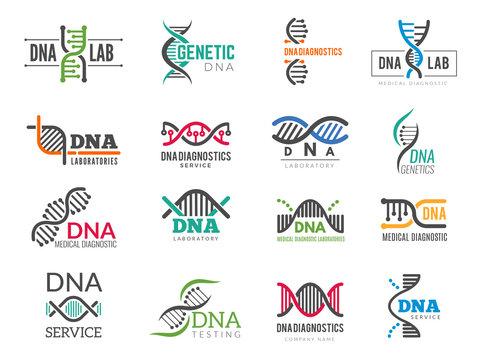 Dna logotype. Business identity with science biotech symbols pharmaceutical bio icons. Logo dna identity molecule, medical company illustration