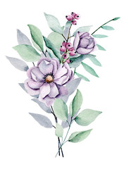 Peonies, watercolor violet flowers bouquet. Floral summer illustration isolated on white background. Hand drawing. Perfectly for wedding, birthday, party and other greeting card design.