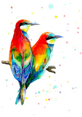 Two colorful birds sitting on branch and looking at the same direction. Love birds. Watercolor illustration.