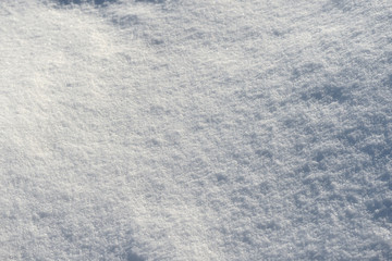 White snow texture on a sunny day. Winter background