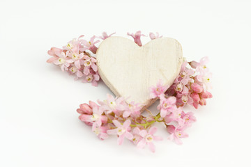heart and flower lying on white