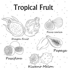 vector illustration , coloring with the image of tropical fruit .