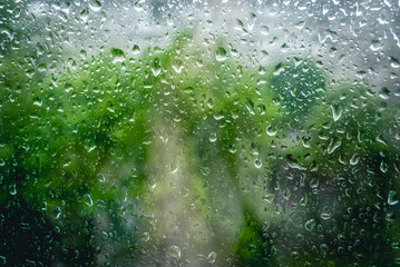 Rain drops on window and green tree in background