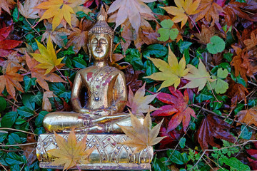 Antique Buddha statue in the fall
