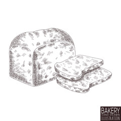 bakery product isolated on white background. Hand drawn bread food illustration. Sketch vintage objects for label, icon, packaging.