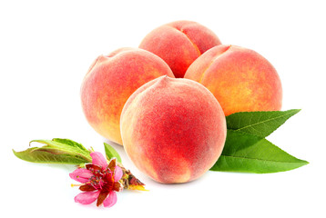 Fruit peach with flower, isolated.