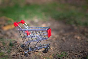 Empty small shopping cart on soil in the garden. Shopping concept.
