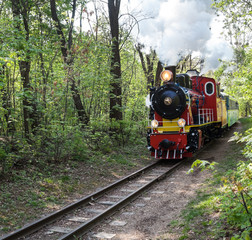 Steam locomotive going through the park