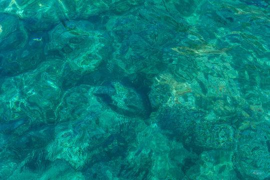 Italy, Cinque Terre, Monterosso, a green underwater