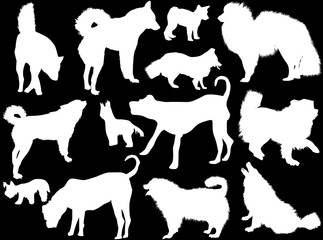 set of thirteen dogs silhouettes isolated on black