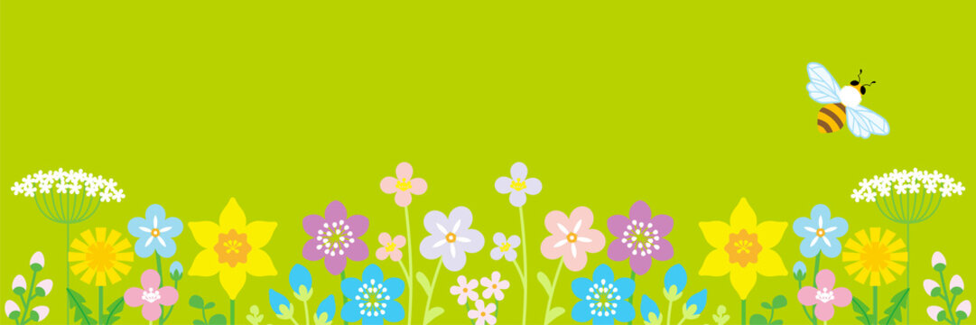 Lined up Colorful Wildflowers and honey bee, header ratio - Green color background