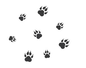 paw logo icon of pet vector