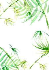 Watercolor abstract background, pattern, postcard, card, label. green spot, splash of paint, blot, divorce, color. Branches, green leaves, fern, palm, mint, bamboo. With a place for writing